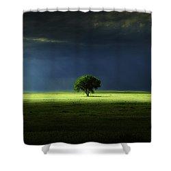 Silent Solitude Shower Curtain