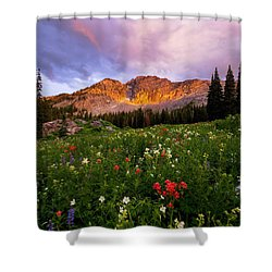 Silent Stirrings Shower Curtain