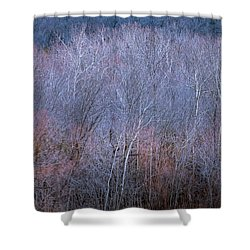 Silent Trees Shower Curtain