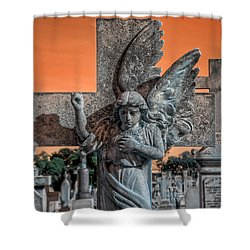 Silent Vigil Shower Curtain by Wayne Sherriff