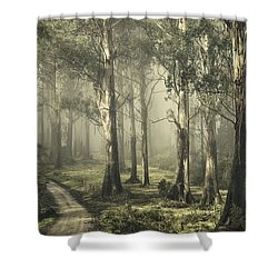 Silently Still Shower Curtain by Andrew Paranavitana