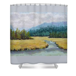 Shower Curtain featuring the painting Siletz Inlet by Nancy Jolley