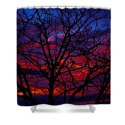Silhouette 1 Shower Curtain