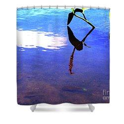 Silhouette Aquatic Fish Shower Curtain