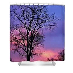 Shower Curtain featuring the photograph Silhouette At Dawn by Larry Ricker