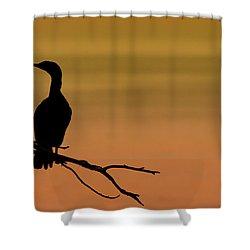 Silhouette Cormorant Shower Curtain by Sebastian Musial
