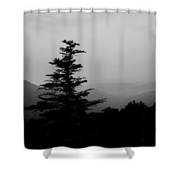 Shower Curtain featuring the photograph Silhouette Of A Tree In The Mountains by Kelly Hazel