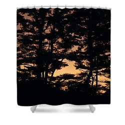 Silhouette Of Forest  Shower Curtain by Erin Paul Donovan