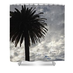 Silhouette Solo Palm  Shower Curtain