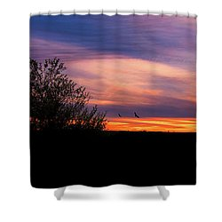 Silhouette Sunset Shower Curtain