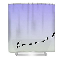 Silhouetted Flight Shower Curtain by Brian Wallace