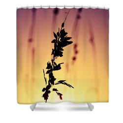Silhouetted Sunset Hues Shower Curtain
