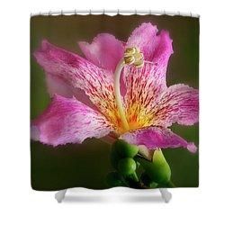 Silk Floss Flower Shower Curtain