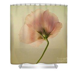 Silk Shower Curtain by Priska Wettstein
