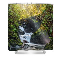 Silk Steps Shower Curtain by James Heckt