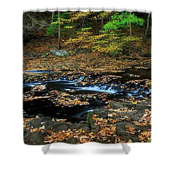Silky New England Stream In Autum Shower Curtain
