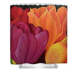 Silky Tulips Unite  Shower Curtain