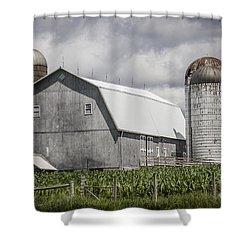 Silos Standing Shower Curtain