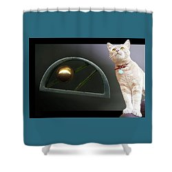 Cat, Silver And Gold  Brooch Shower Curtain
