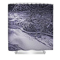 Silver Brook In Winter Shower Curtain