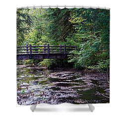 Silver Creek Falls #38 Shower Curtain