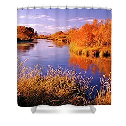 Silver Creek Fly Fishing Only Shower Curtain