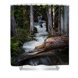 Silver Falls Shower Curtain