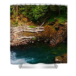 Silver Falls Panorama Shower Curtain