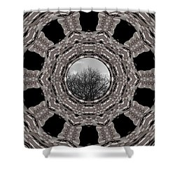 Silver Idyl Shower Curtain by Pepita Selles