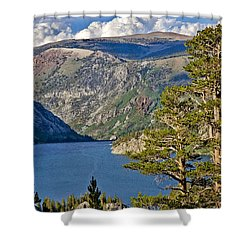 Silver Lake Pines Shower Curtain by Chris Brannen