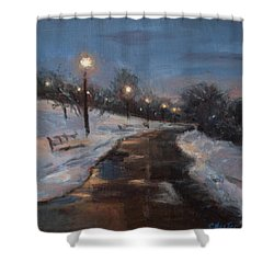 Silver Lake Reservoir Shower Curtain by Sarah Yuster