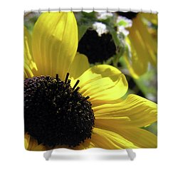 Silver Leaf Sunflower Shower Curtain