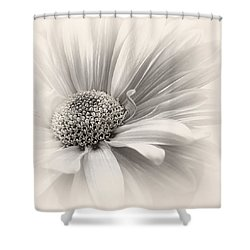 Shower Curtain featuring the photograph Silver Mist by Darlene Kwiatkowski