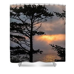 Silver Point Silhouette Shower Curtain