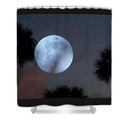 Silver Sky Ball Shower Curtain