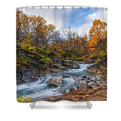 Silverfallet Shower Curtain