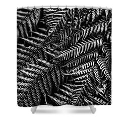 Silvern Shower Curtain by Andrew Paranavitana
