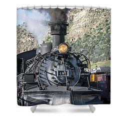 Shower Curtain featuring the photograph Silverton Bound by Colleen Coccia