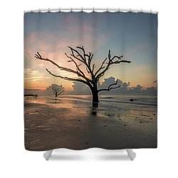 Silvia's Tree Shower Curtain by Robert Loe