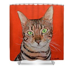 Simon Shower Curtain