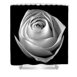 Shower Curtain featuring the photograph Simple Elegance by Elsa Marie Santoro