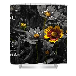 Shower Curtain featuring the photograph Simplicity by Deborah Klubertanz