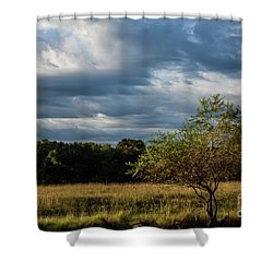 Shower Curtain featuring the photograph Simplicity by Iris Greenwell