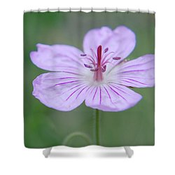 Simplicity Of A Flower Shower Curtain