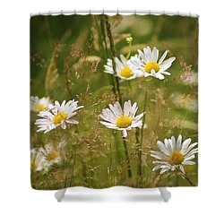 Simplicity Shower Curtain by Sheila Ping
