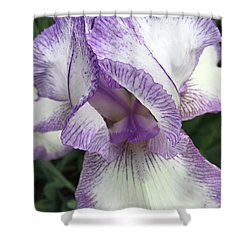 Simply Beautiful Shower Curtain by Sherry Hallemeier