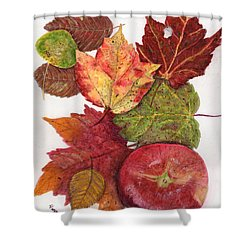 Shower Curtain featuring the painting Simply Delicious by Peggy A Borel