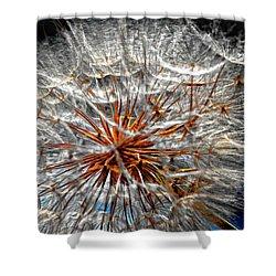 Simply Grand 2 Shower Curtain by Steve Harrington
