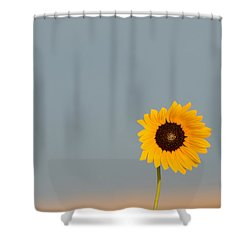 Simply Kansas Shower Curtain