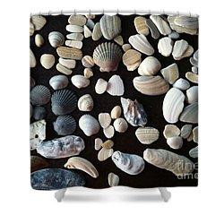 Simply Seashells Shower Curtain
